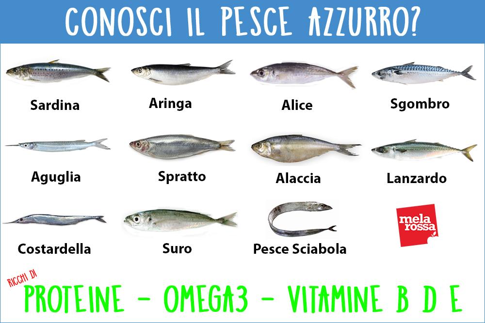 Pesce Azzurro Tipologie Proprietà E Benefici Per La Salute Melarossa