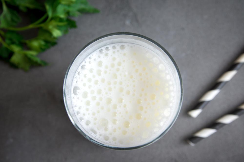 Proteggere la flora intestinale: i probiotici