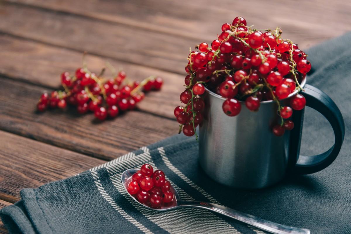 ribes e uva  spina : benefici per la salute