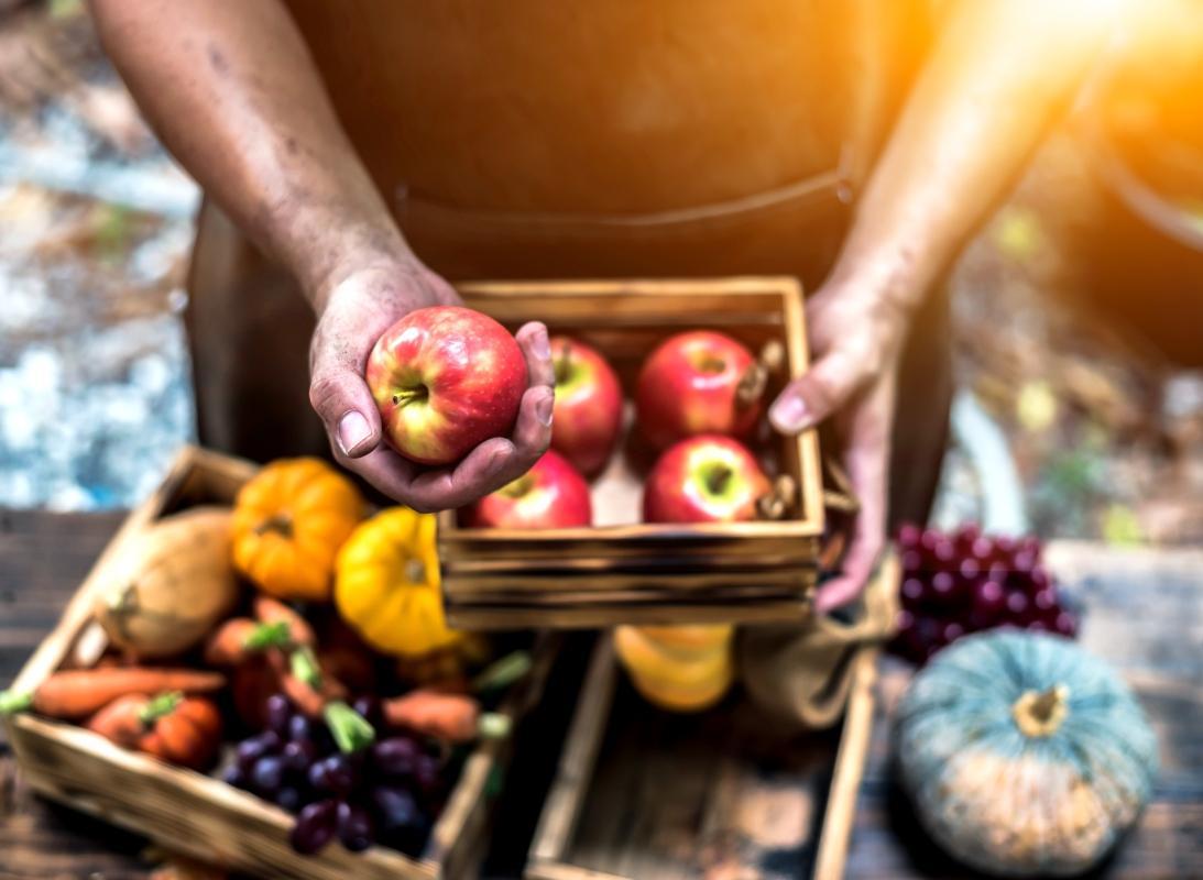 frutta e verdura di stagione: guida completa atunno