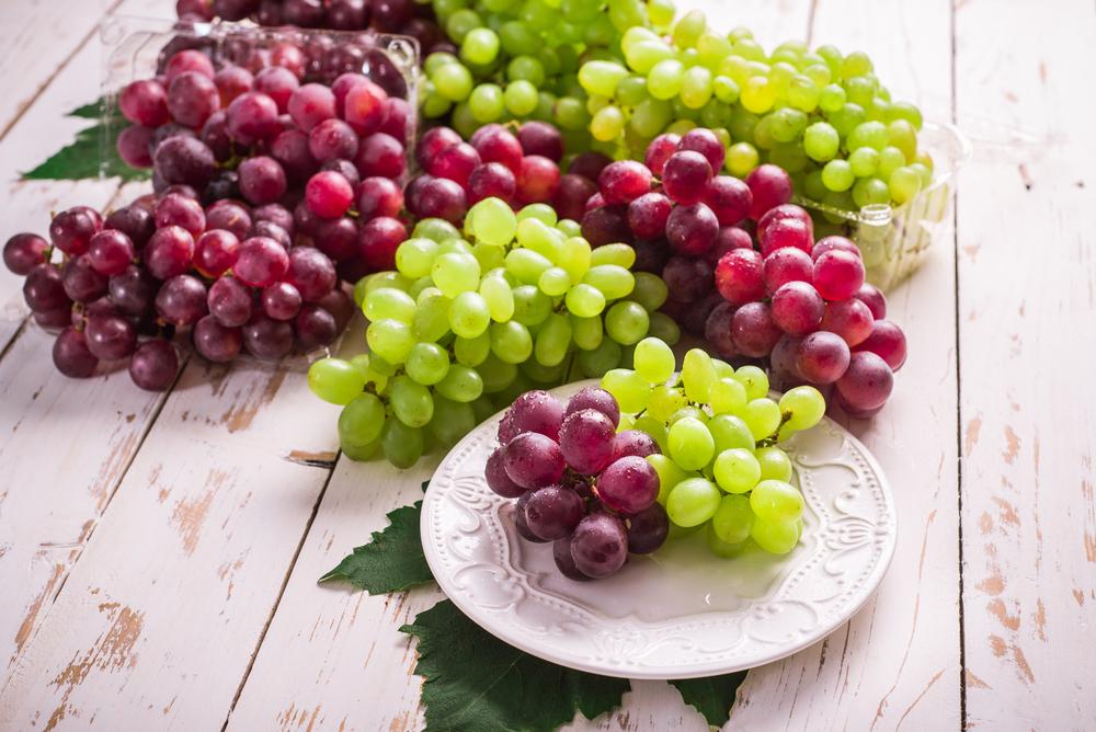uva-antivirale-e-antiossidante