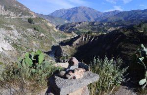 perù canyon del colca