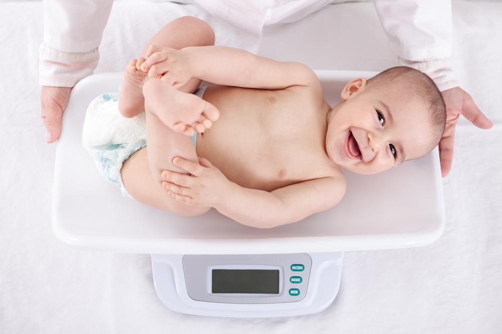 allattare, l'importanza della pesata