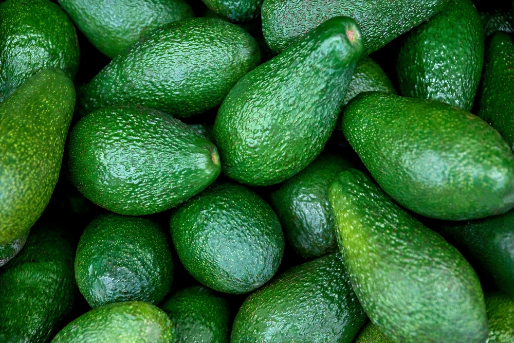 avocado, le proprietà