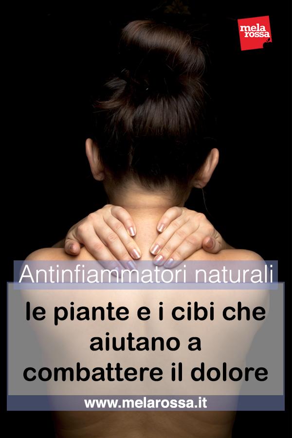 antinfiammatori naturali: piante ecibi per combattere il dolore