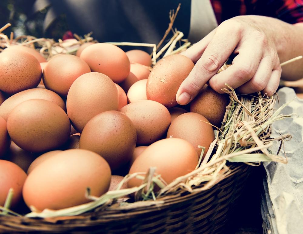 come conservare le uova