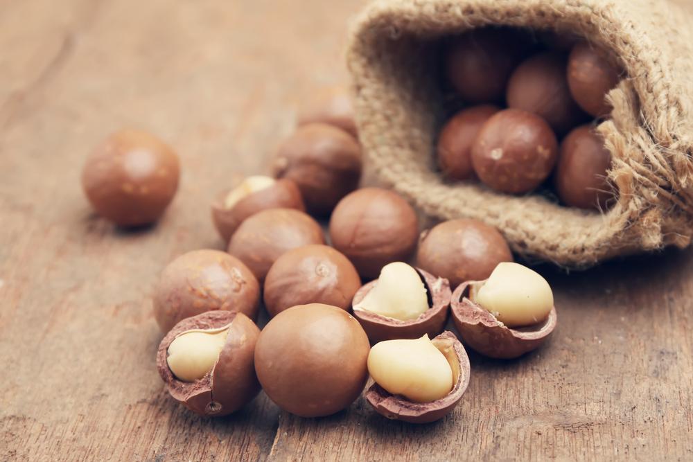 frutta secca, noci di macadamia