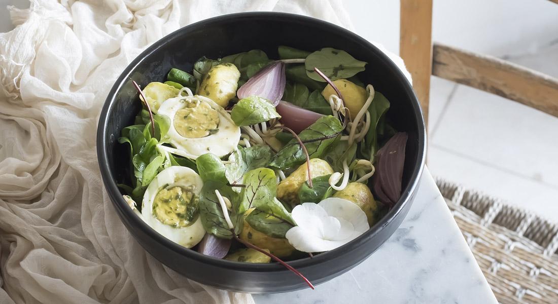 ricette con le vitamine B: insalata di germogli