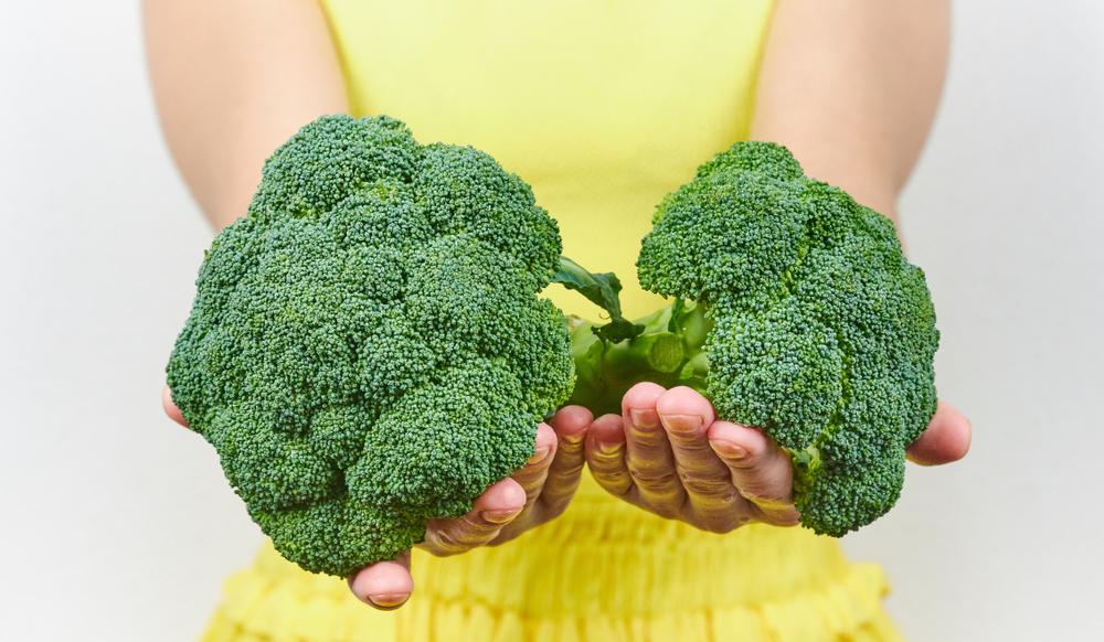 tumore seno prevenzione alimentazione