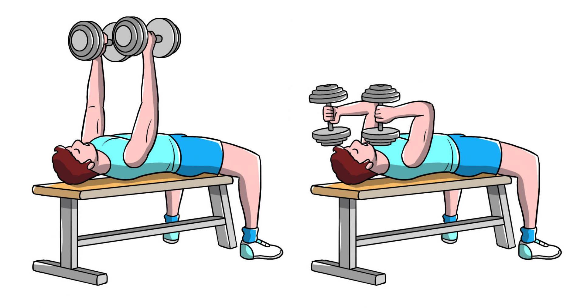 workout a casa: french press