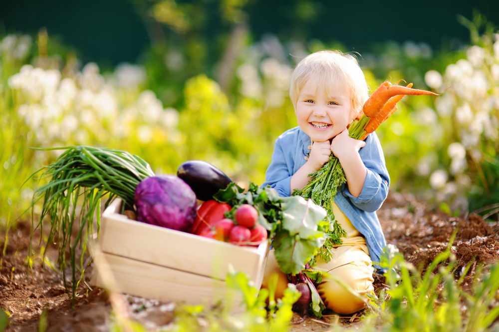 alimentazione biologica agricoltura allevamento benefici
