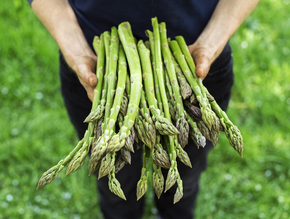 asparagi come scegliere