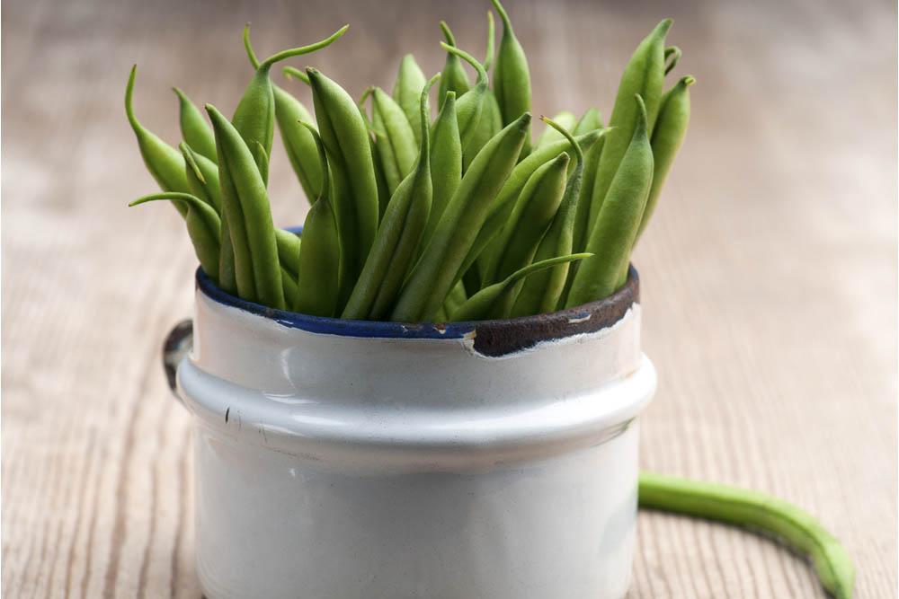 I fagiolini, anche se sono legumi, per le loro caratteristiche nutrizionali possono essere considerati a tutti gli effetti degliortaggi, preziosi per chi ama l'alimentazione sana e punta al benessere del proprio corpo. Melarossa.it #dietamelarossa
