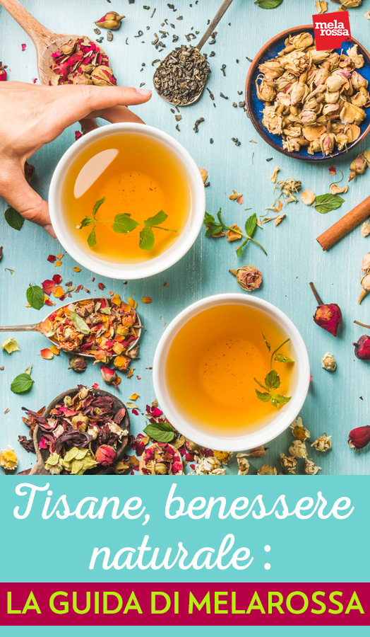 tisane, benefici e ricette