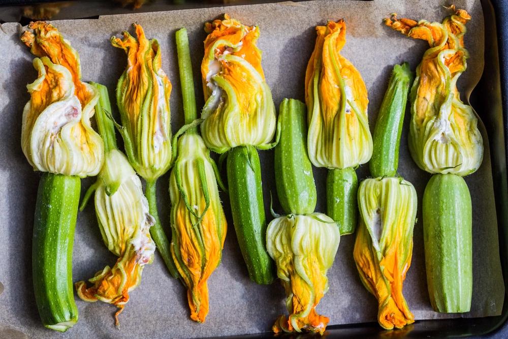 Insieme al pomodoro, la zucchina è uno degli ortaggi più diffusi e più consumati in Italia - Melarossa.it #dietamelarossa