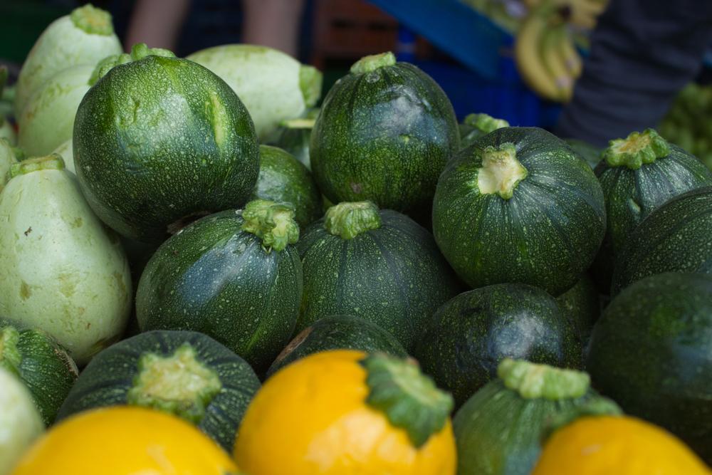 Insieme al pomodoro, la zucchina è uno degli ortaggi più diffusi e più consumati in Italia - Melarossa.it #dietamelarossa #zucchina