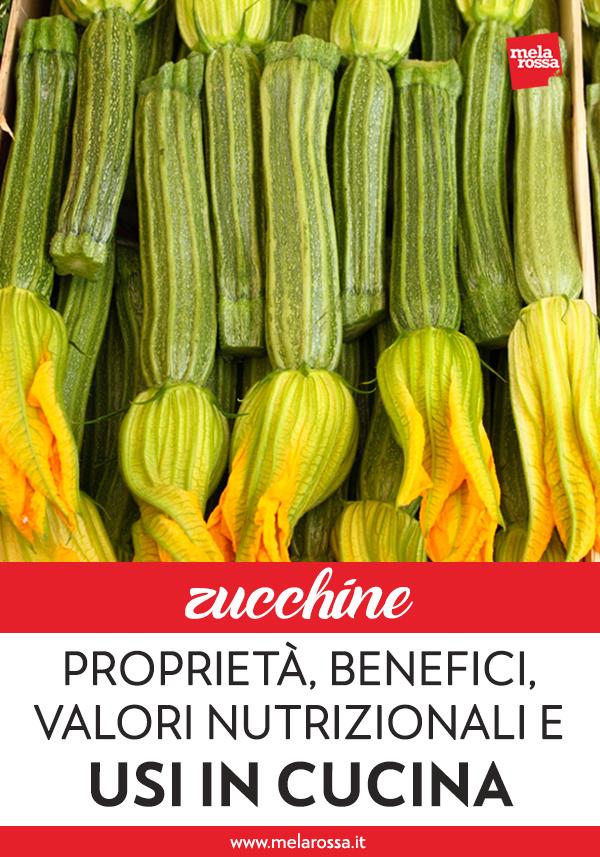 Insieme al pomodoro, la zucchina è uno degli ortaggi più diffusi e più consumati in Italia. Le sue stagioni migliori sono primavera ed estate, ma grazie alle coltivazioni in serra la zucchina si può trovare disponibile tutto l'anno e può arricchire i piatti che arrivano sulle nostre tavole. Melarossa.it #dietamelarossa