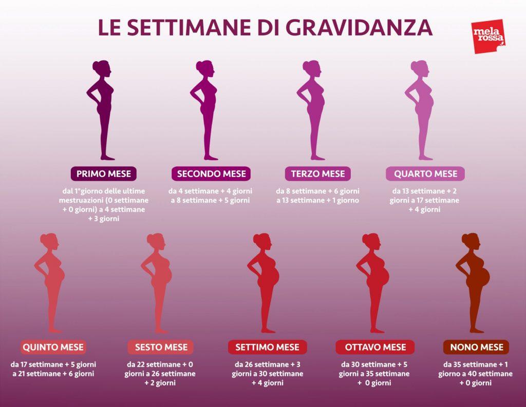 calcolo delle settimane di gravidanza corrispondenza settimane mesi