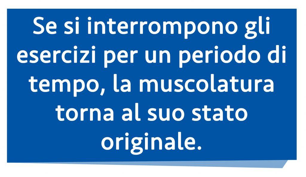 diastasi addominale: muscolatura