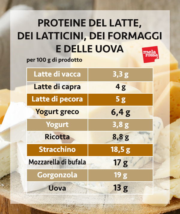 guida sulle proteine: le proteine di latte, latticini, formaggi e uova