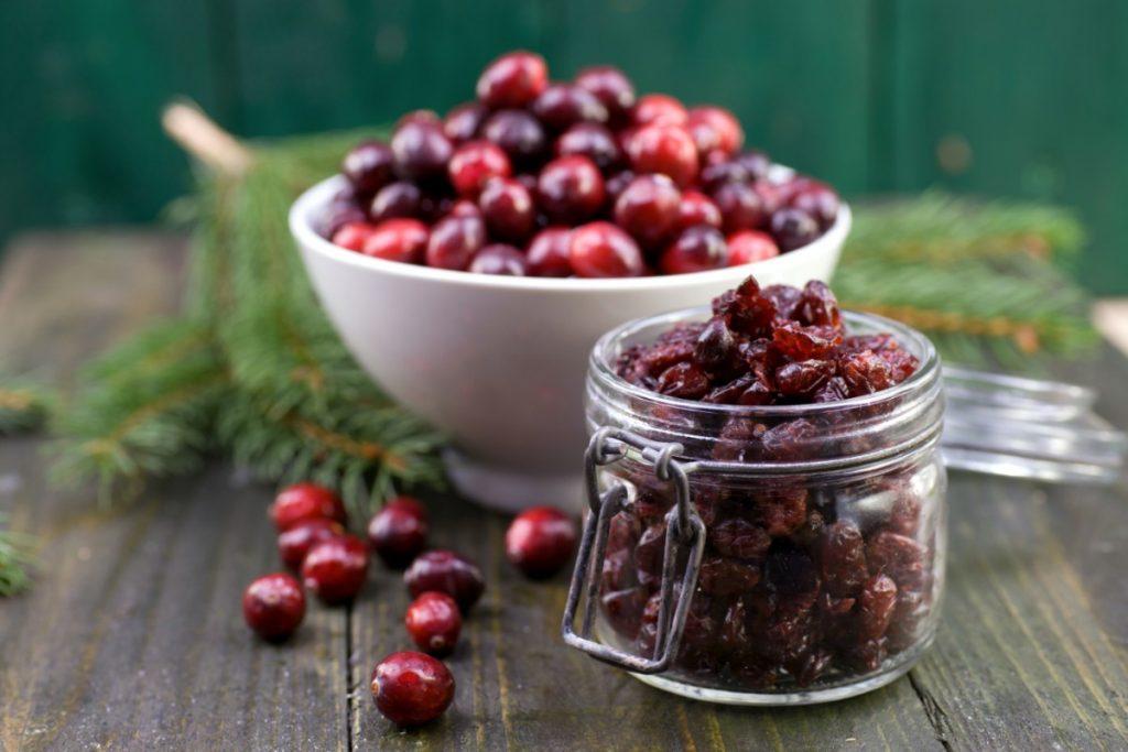 alimenti con meno di 120 calorie: mirtilli rossi essiccati