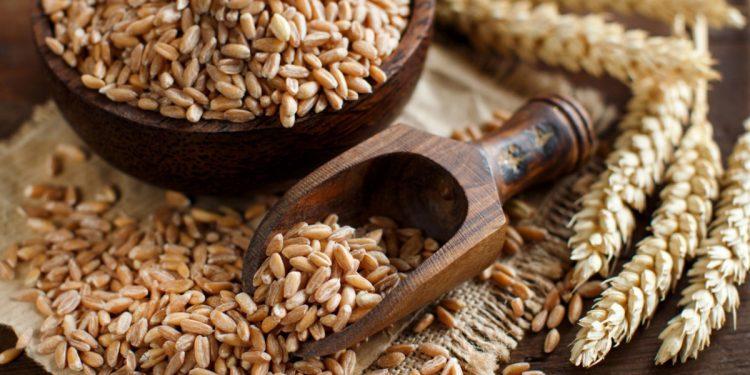 farro: proprietà, benefici ed utilizzo in cucina