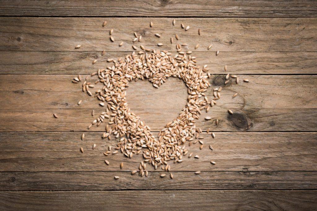 valori nutrizionali