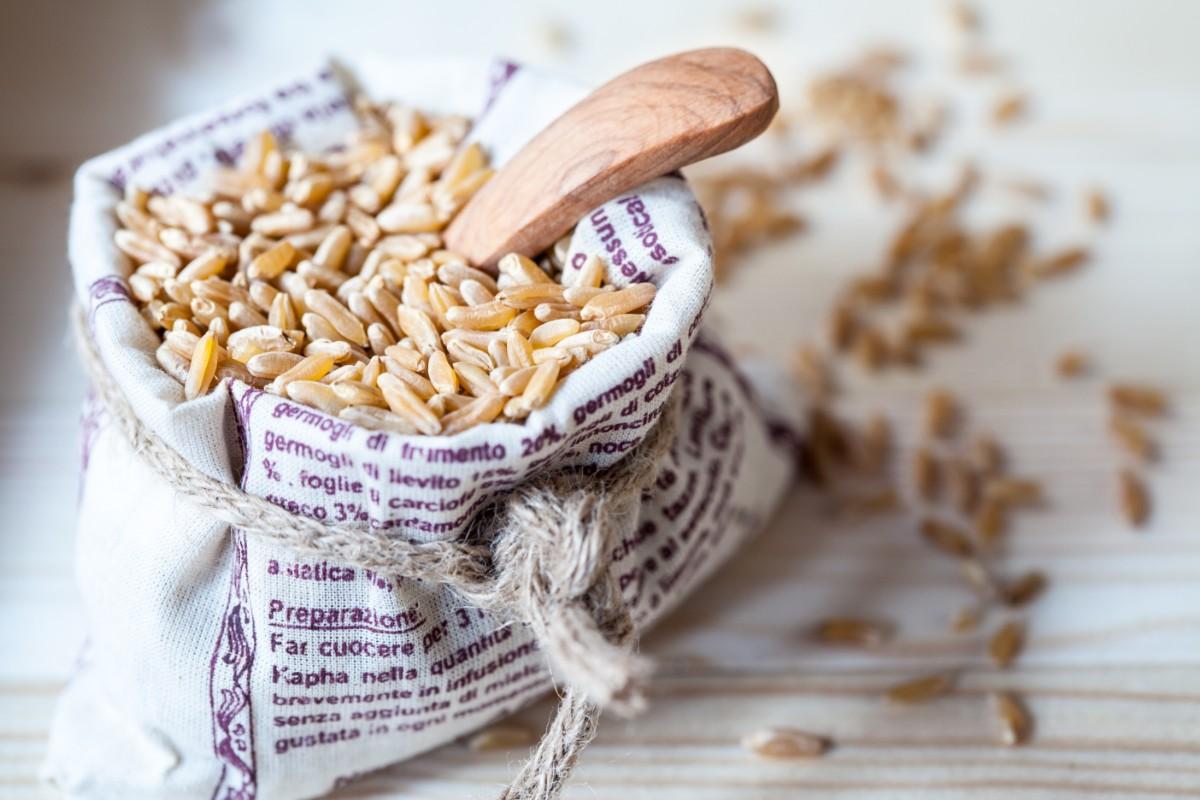 kamut: proprietà, benefici ed utilizzo in cucina