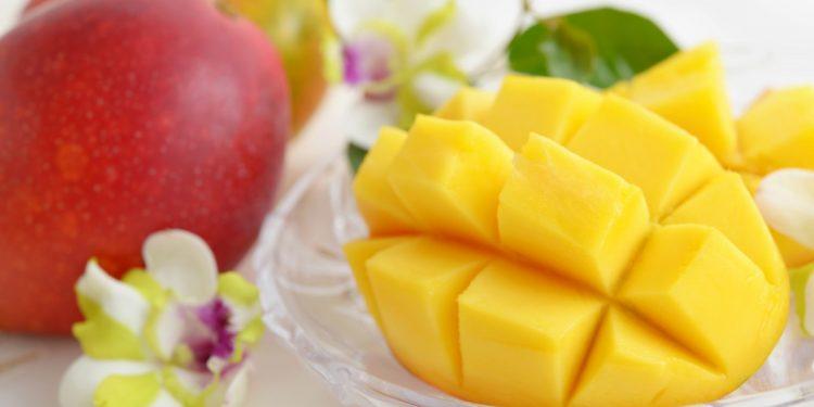 mango: proprietà, benefici ed utilizzo in cucina