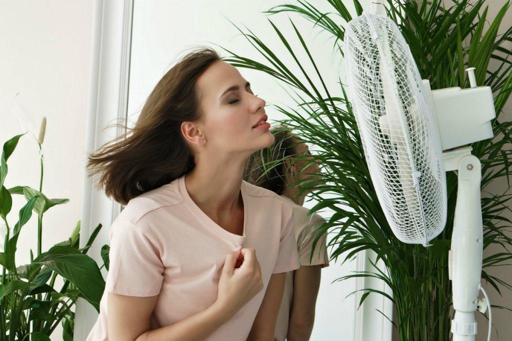 aria condizionata: meglio il ventilatore?
