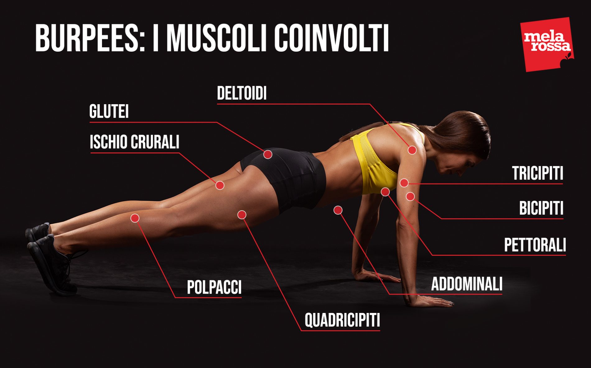 burpees: muscoli coinvolti