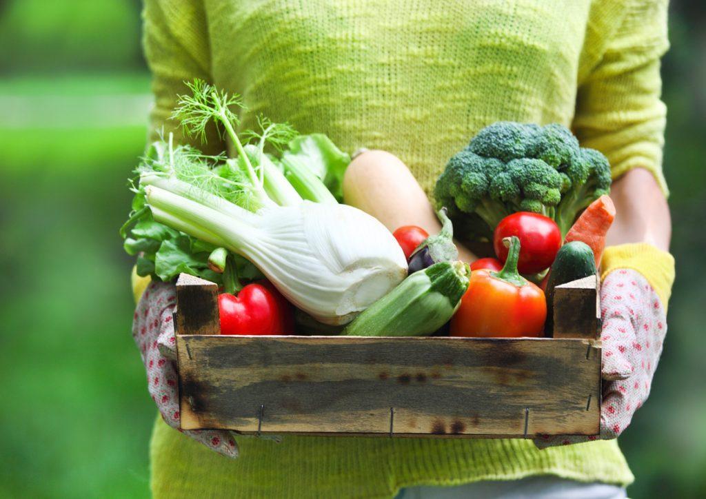 Alimentazione contro la gastrite