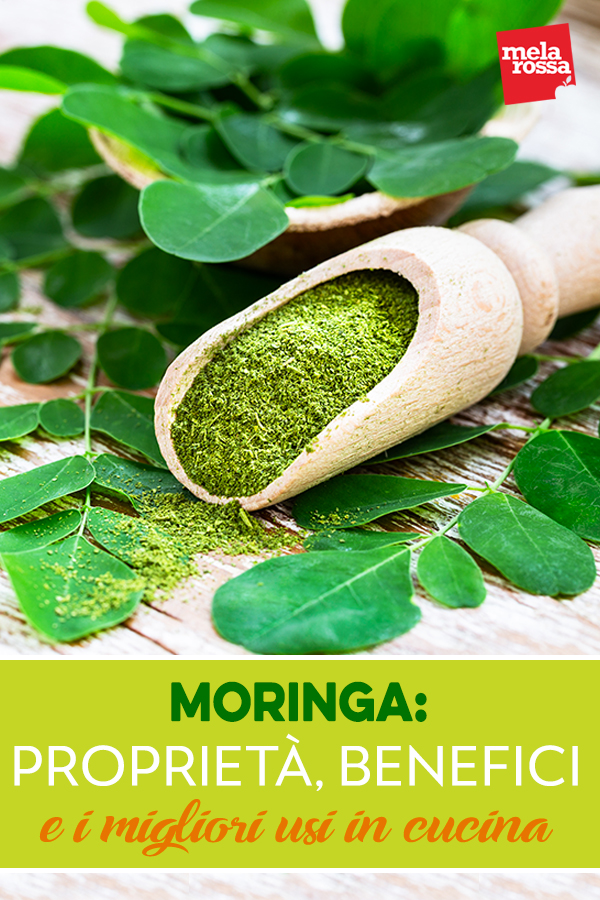 moringa: proprieta, benefici