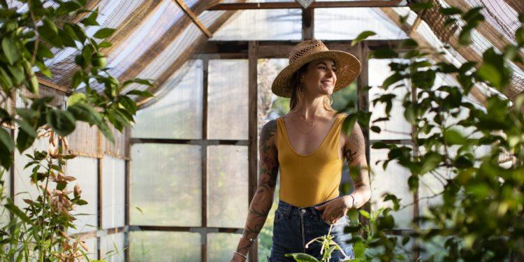 piante-combattere-caldo
