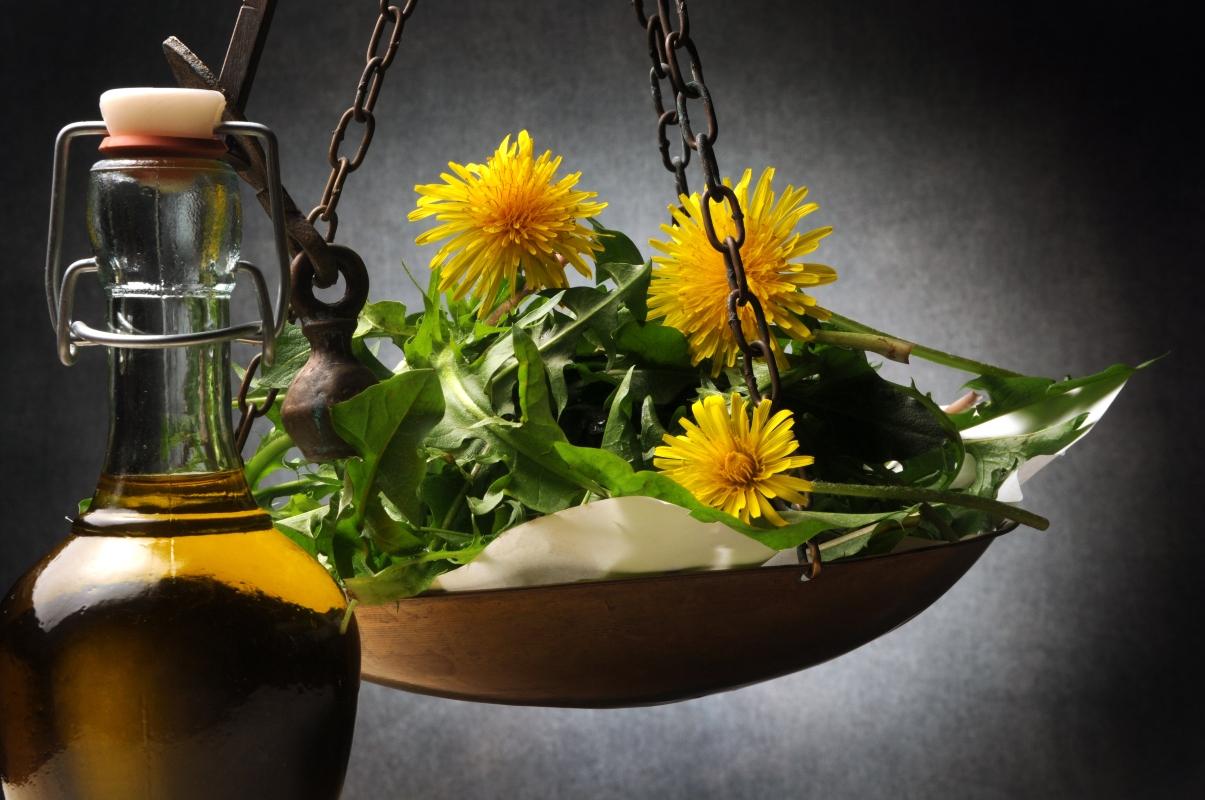tarasacco: benefici, proprietà, usi in fitoterapia e cucina