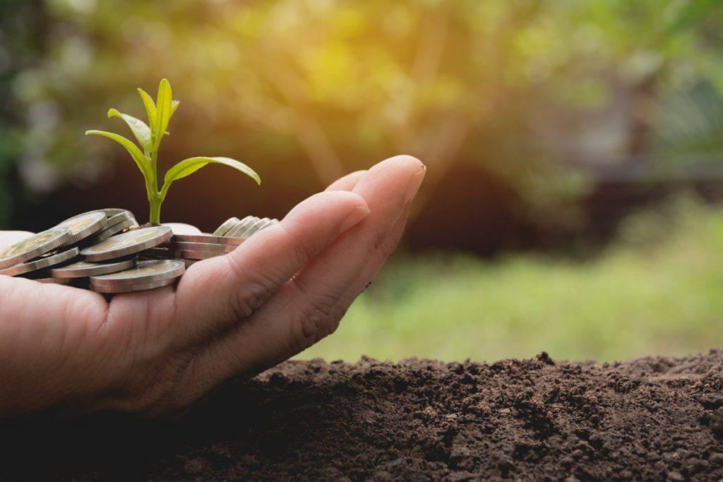 allevamenti e tutela dell'ambiente