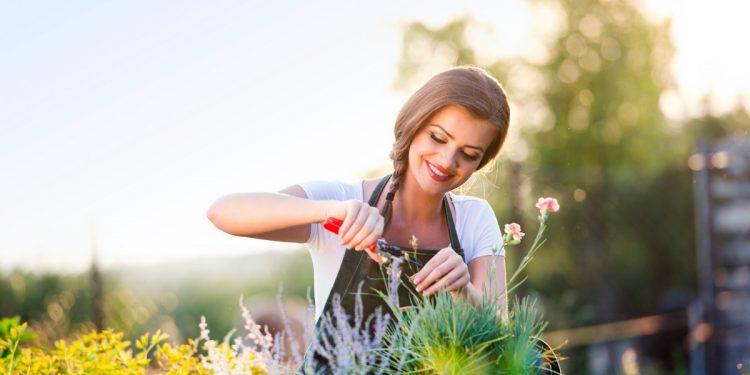 contro-ansia-solitudine-giardinaggio