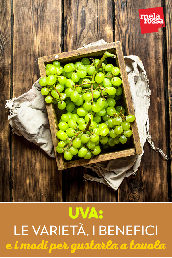 uva-varieta-benefici