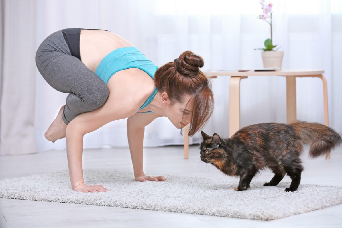 afte e yoga
