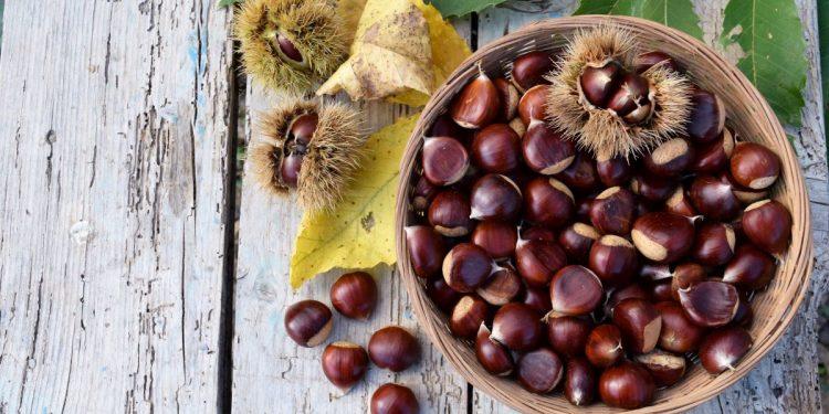 castagne-valori-nutrizionali