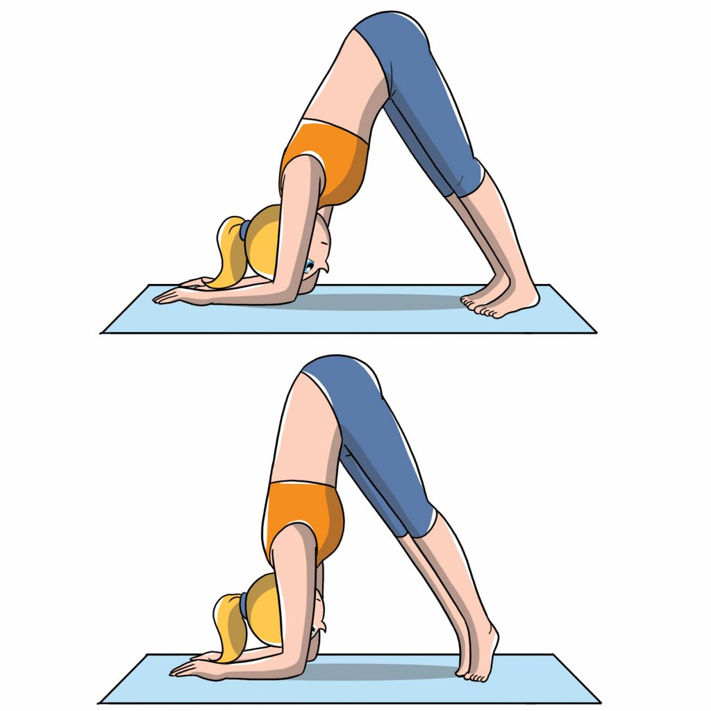 posizioni yoga delfino