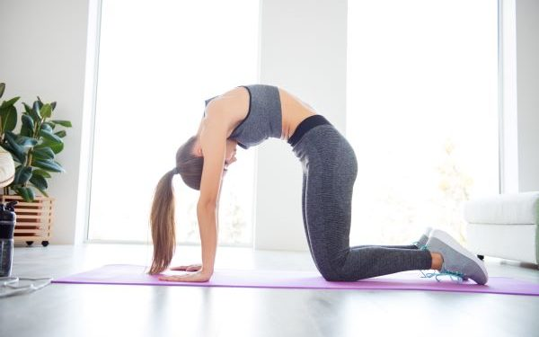 esercizi-schiena