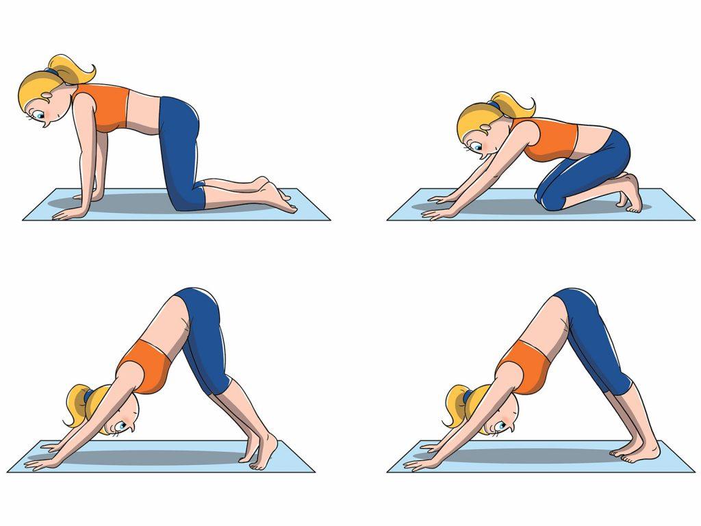posizioni yoga livello intermedio: cane a testa in giù