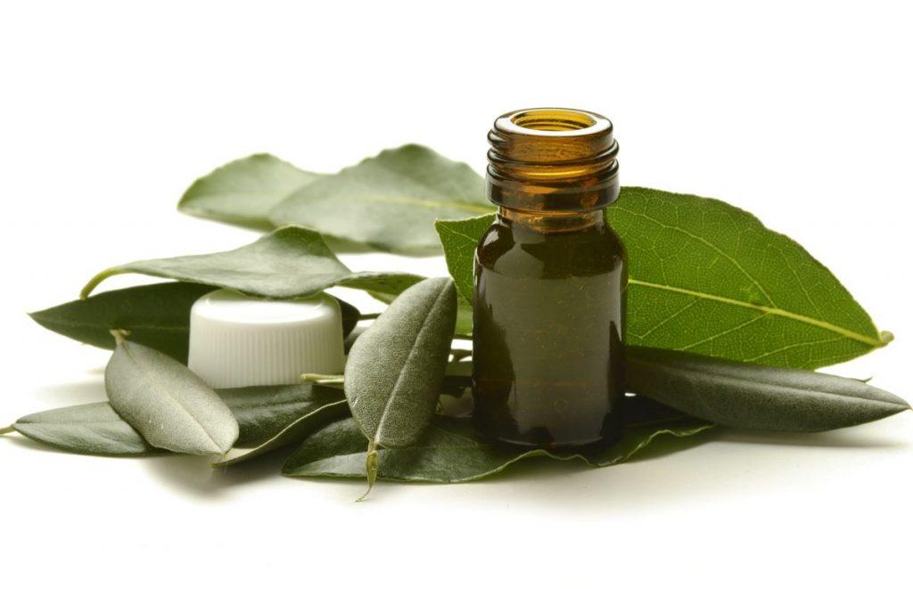 estratto-foglie-olivo