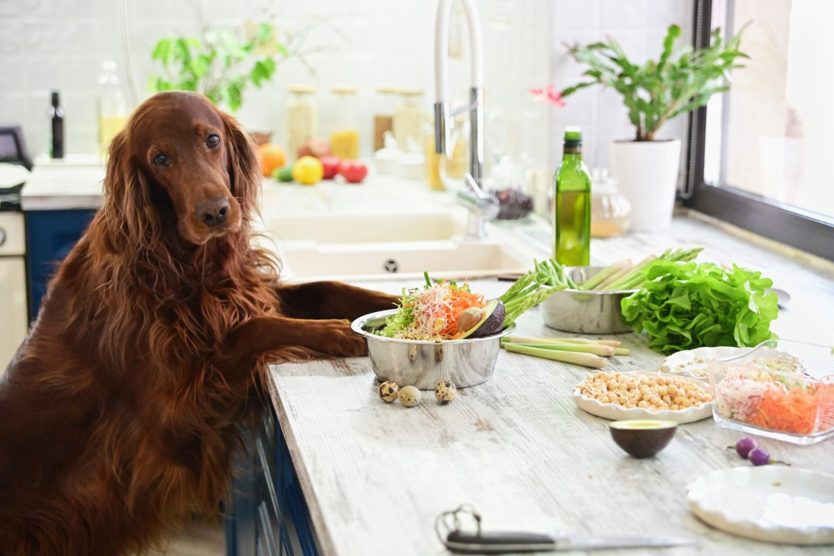 dieta vegetariana di Melarossa per dimagrire