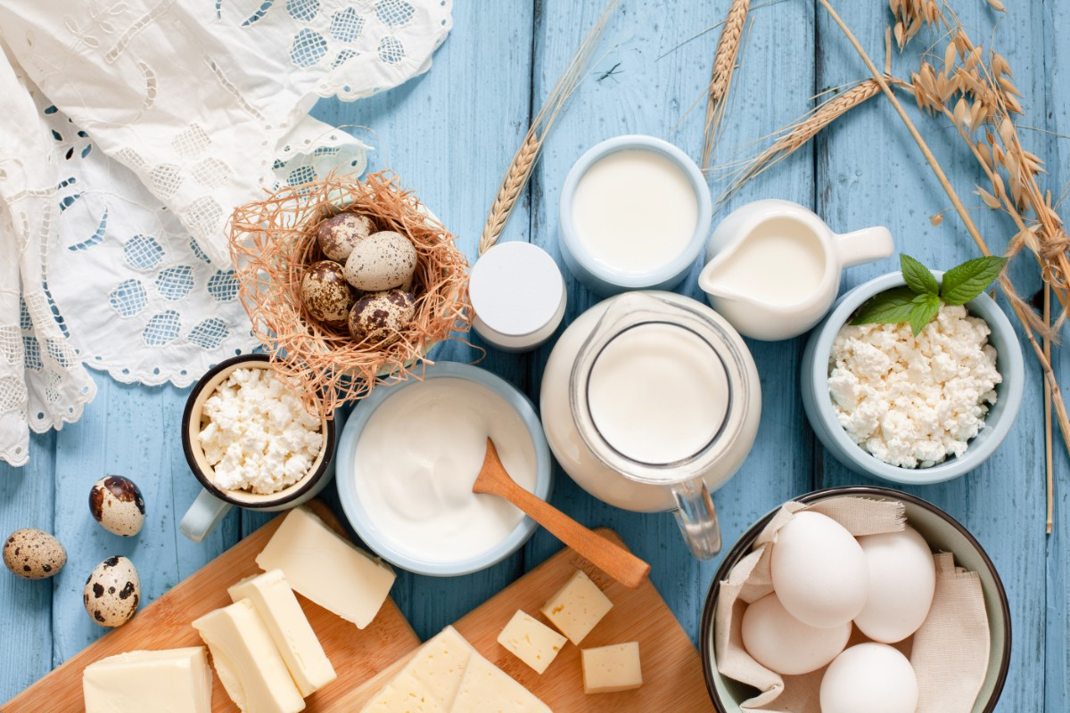 latte e derivati  immunonutrizione