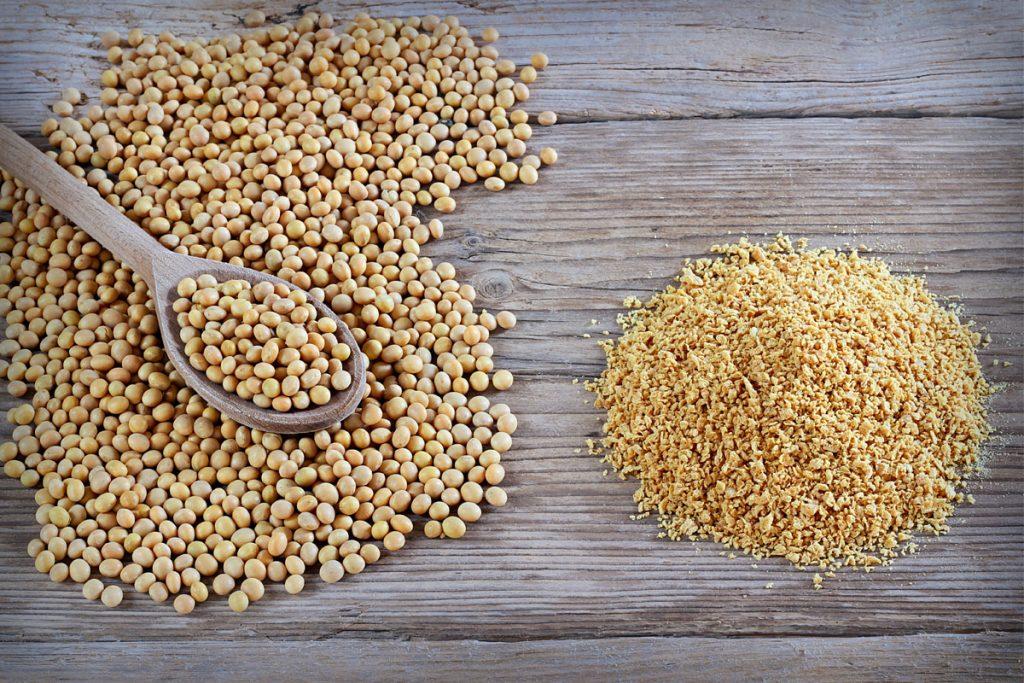 Polpette di soia granulare