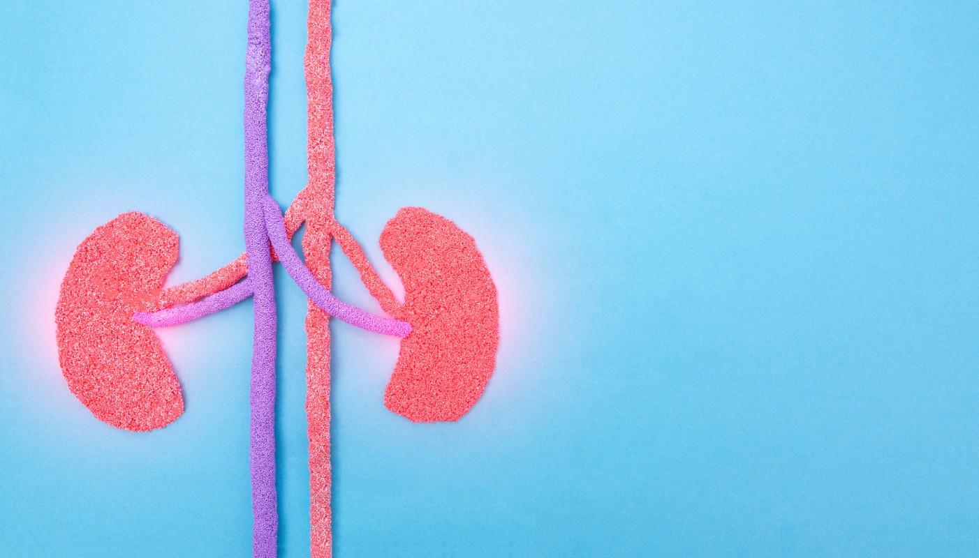 problemi ai reni e streptococco