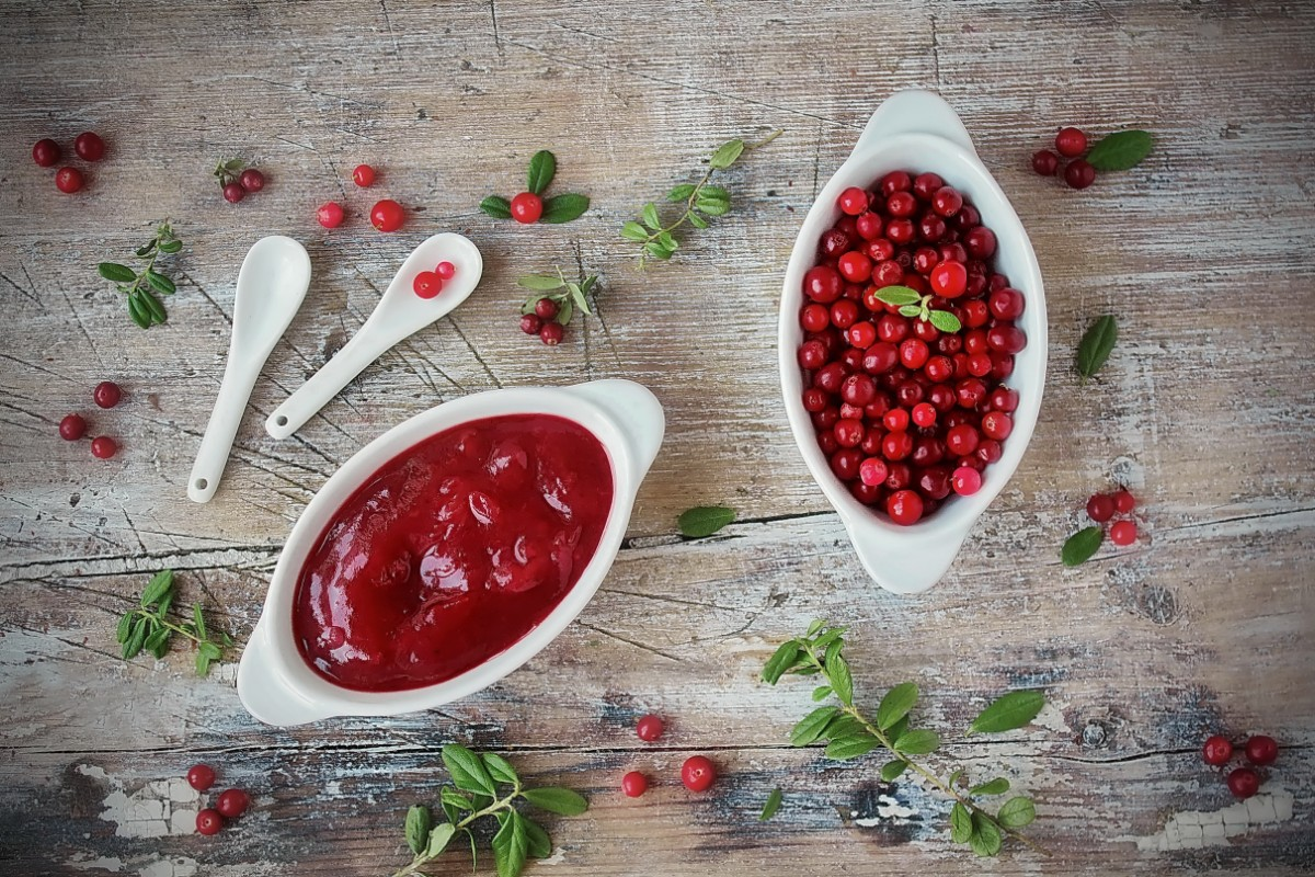 salsa cranberry