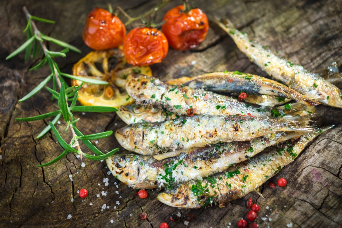 sardine immunonutrizione
